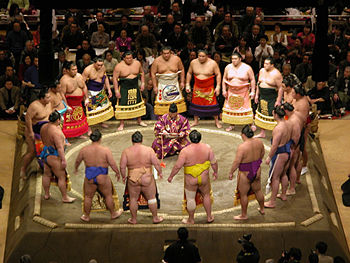 Sumo is not all push and shove