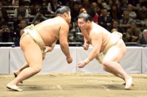 sumo wrestling history