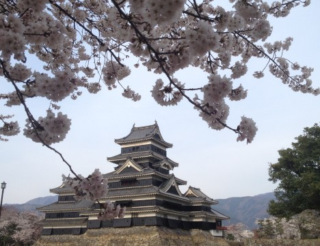 Architecturally - the most perfect historic building in Japan? Matsumoto Castle in full spring elegance – a glorious symbol of this wonderful little city perched on the plains to the east of the Northern Japanese Alps.