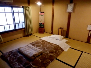 My room at the Guesthouse Naramachi