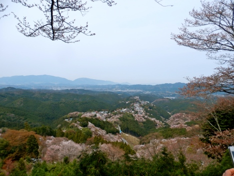 View from the Hanayagura Viewpoint