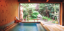Just one among many hot springs at the Kinugawa Grand Hotel in Nikko National Park.