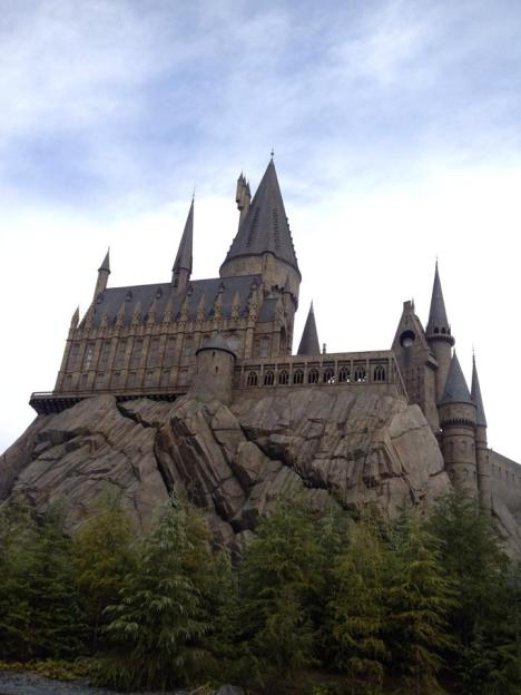 Potter pad