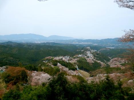 View from Yoshino's main viewpoint
