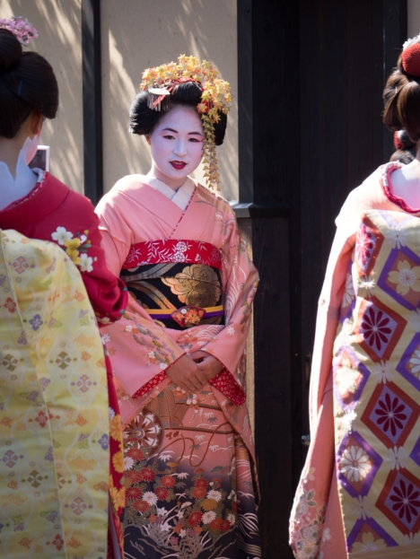 Beautiful and mysterious geisha in Kyoto