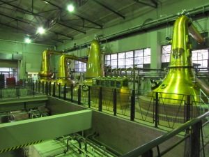 From here we ventured into the distillation hall, where three different shapes of 'pot stills' are used to create 'new-make spirits' of different characters.