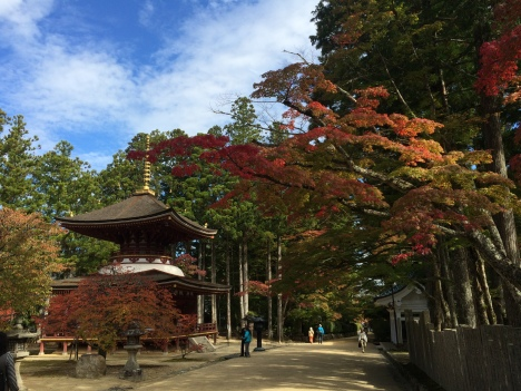 The ancient temple community of Koya