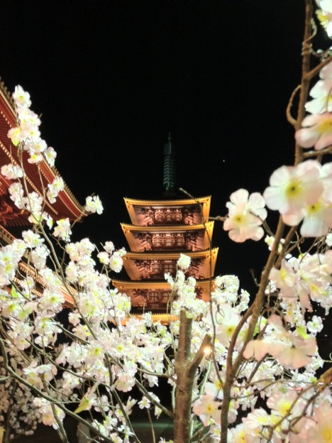 Tokyo's Senso-ji Temple with cherry blossom