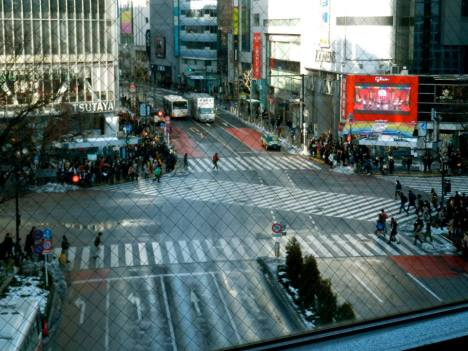 Shinjuku scramble crossing